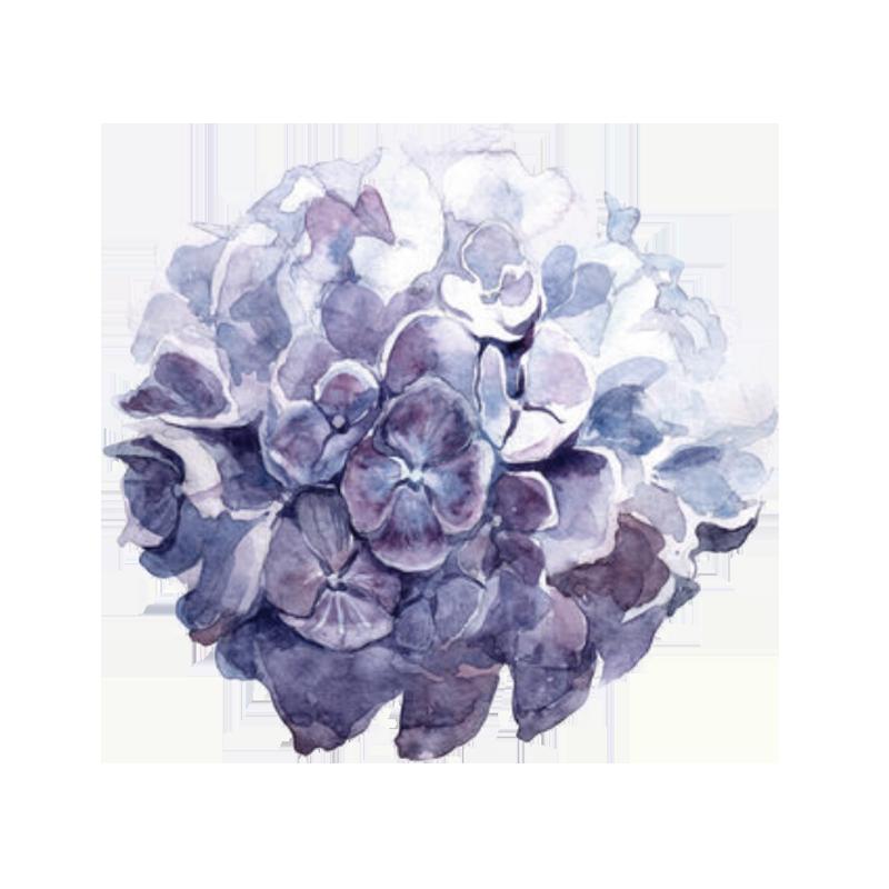 Moulin-de-Launoy-mariage-seminaire-week-end-meilleur-lieu-proche-paris-moins-1-heure-hortensia-violet